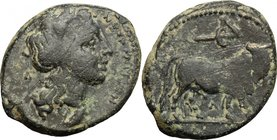Greek Italy. Central and Southern Campania, Neapolis. AE 17.5 mm, c. 300-275. D/ ΝΕΟΠΟΛΙΤΩΝ. Laureate head of Apollo right; behind, Λ. R/ Man-faced bu...