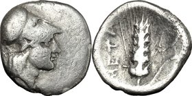 Greek Italy. Southern Lucania, Metapontum. AR Diobol, c. 325-275 BC. D/ Helmeted head of Athena right. R/ Grain ear with leaf to right; cornucopiae ab...