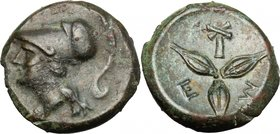Greek Italy. Southern Lucania, Metapontum. AE 14.5 mm, c. 300-250. D/ Head of Athena left wearing crested Corinthian helmet. R/ Three barley-grains; b...