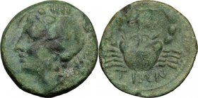 Greek Italy. Bruttium, Brettii. AE Quarter (Trihemiobol), 216-214 BC. D/ Head of sea-goddes (Amphitrite?) left, wearing crab headdress. R/ ΒΡΕΤ/ΤΙΩΝ. ...