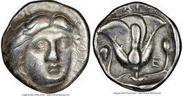CARIAN ISLANDS. Rhodes. Ca. 340-305 BC. AR didrachm (19mm, 1h). NGC VF. Head of Helios facing, turned slightly right, hair parted in center and swept ...
