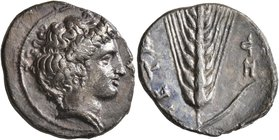 LUCANIA. Metapontion. Circa 400-340 BC. Didrachm or Nomos (Silver, 23 mm, 7.43 g, 3 h). Head of Demeter to right, wearing pendant earring and pearl ne...