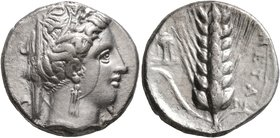 LUCANIA. Metapontion. Circa 340-330 BC. Didrachm or Nomos (Silver, 20 mm, 7.75 g, 7 h). Head of Demeter to right, wearing wreath of grain ears, triple...