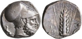 LUCANIA. Metapontion. Circa 340-330 BC. Didrachm or Nomos (Silver, 19 mm, 7.88 g, 2 h). Λ[EYKIΠΠOΣ Bearded head of Leukippos to right, wearing Corinth...