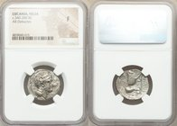 LUCANIA. Velia. Ca. 340-300 BC. AR didrachm or nomos (22mm, 9h). NGC Fine. 5th Period, Theta group, ca. 340-334 BC. Head of Athena right, wearing cres...