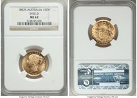 "Victoria gold ""Shield"" Sovereign 1882-S MS62 NGC, Sydney mint, KM6. Dazzling, glossy luster floods the planchet and serves to highlight the fully defi..."