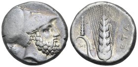 LUCANIA. Metapontum. Circa 340-330 BC. Nomos or Didrachm (Silver, 20 mm, 8.02 g, 9 h), Ami.... Head of Leukippos to right, wearing Corinthian helmet; ...