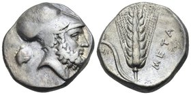 LUCANIA. Metapontum. Circa 340-330 BC. Didrachm or nomos (Silver, 19 mm, 7.77 g, 3 h), Ami... Bearded head of Leukippos to right, wearing Corinthian h...