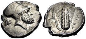 LUCANIA. Metapontum. Circa 340-330 BC. Didrachm or nomos (Silver, 23 mm, 7.79 g, 1 h). Bearded head of Leukippos to right, wearing Corinthian helmet; ...