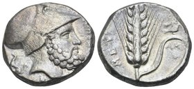 LUCANIA. Metapontum. Circa 340-330 BC. Nomos or Didrachm (Silver, 17.5 mm, 7.95 g, 1 h). ΛEYKI-ΠΠOΣ Helmeted head of Leukippos to right; behind, dog s...