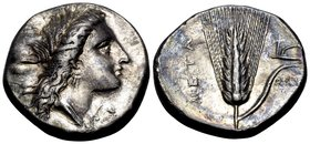 LUCANIA. Metapontum. Circa 330-290 BC. Didrachm or nomos (Silver, 20.5 mm, 7.82 g, 10 h). Head of Demeter to right, wearing wreath of barley ears and ...