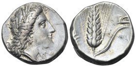 LUCANIA. Metapontum. Circa 330-290 BC. Didrachm or nomos (Silver, 19 mm, 7.93 g, 2 h). Head of Demeter to right, wearing wreath of barley ears and tri...