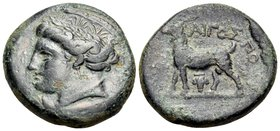 THRACE. Aigospotamoi. Circa 300 BC. (Bronze, 21 mm, 7.70 g, 10 h). Wreathed head of Demeter to left, wearing decorated polos. Rev. AIΓOΣΠO Goat standi...