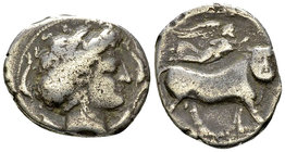 Neapolis AR Didrachm, c. 320-300 BC 