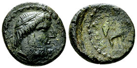 Solous AE Tetras, c. 200-150 BC 
