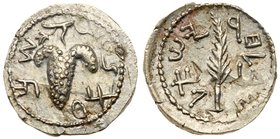 Judaea, Bar Kokhba Revolt. Silver Zuz (3.01 g), 132-135 CE. Year 2 (133/4 CE). 'Simon', bunch of grapes with leaf and tendril. Reverse: 'Year two of t...