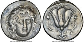 CARIAN ISLANDS. Rhodes. Ca. 305-275 BC. AR didrachm (20mm, 11h). NGC VF. Head of Helios facing slightly right / POΔION, rose with bud to either side, ...