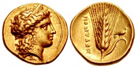 LUCANIA, Metapontion. temp. Alexander the Molossian. Circa 334-322 BC. AV Tetrobol – Third Stater (14mm, 2.61 g, 9h). Achaian standard.