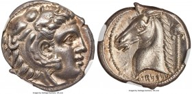 SICILY. Siculo-Punic. Ca. 300-289 BC. AR tetradrachm (25mm, 16.88 gm, 4h). NGC Choice AU 5/5 - 4/5, Fine Style. Head of young Heracles right, wearing ...