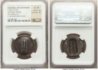LUCANIA. Metapontum. Ca. 540-510 BC. AR stater (28mm, 8.05 gm, 12h). NGC Choice XF 5/5 - 4/5. META, seven-grained barley ear with bracts at base, with...