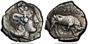 LUCANIA. Thurium. Ca. 4th century BC. AR distater (26mm, 15.84 gm, 7h). NGC Choice VF 4/5 - 4/5. Ca. 400-350 BC. Head of Athena right, wearing necklac...