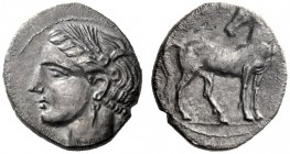 Greek Coins   Iberia, Carthago Nova   Hispano-Carthaginian issues . Drachm circa 237-220, AR 4.02 g. Head of Tanit l., wearing wreath of ear of corns....