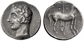 Greek Coins   Iberia, Carthago Nova   Hispano-Carthaginian issues . Shekel circa 221-206, AR 6.05 g. Male head l. (Hannibal?). Rev. Horse standing r.;...