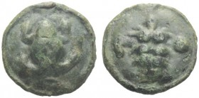 Greek Coins   Apulia, Luceria  Uncia circa 217-212, Æ 12.30 g. Frog seen from above. Rev. Ear of barley; in l. field, pellet and in r., L. Historia Nu...