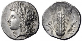 Greek Coins   Lucania, Metapontum  Nomos circa 330-290, 7.96 g. Head of Demeter l., wearing barley wreath. Rev. META Ear of barley with stalk and leaf...