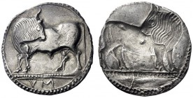 Greek Coins   Sybaris  Nomos circa 550-510, AR 7.83 g. Bull standing l., head reverted; in exergue, VM. Rev. The same type incuse. SNG Copenhagen 1388...