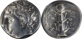 KYRENAICA. Kyrene. AR Didrachm (7.69 gms), ca. 305-300 B.C. CHOICE VERY FINE.