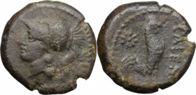Greek Italy. Samnium, Southern Latium and Northern Campania, Cales. AE 19 mm, circa 276-260 BC. D/ Head of Athena left, helmeted. R/ Cock standing rig...