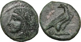 Sicily. Akragas. Phintias, Tyrant (287-278 BC). AE 15mm. D/ Head of Apollo left, laureate. R/ Eagle standing right, head turned back, wings closed. CN...