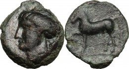 Sicily. Eryx. AE Onkia, 400-340 BC. D/ Head of Aphrodite(?) left, hair tied in knot at back of head. R/ Horse standing left, foreleg raised. CNS 19/8....