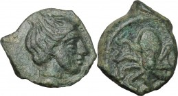 Sicily. Eryx. AE Onkia, 400-340 BC. D/ Female head right. R/ Octopus. CNS I, 24. AE. g. 1.10 mm. 12.00 Green patina. VF.