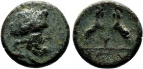 Pisidia Sagalassos Æ / Zeus / Two goats, 1st Century BC-!st Century AD  Condition: Very Fine  Weight: 2.9 gr Diameter: 15 mm