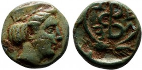 ASIA MINOR. Uncertain. Ae (Circa 3rd century BC).   Condition: Very Fine  Weight: 1.3 gr Diameter: 11 mm
