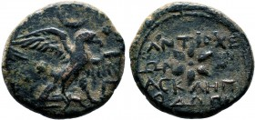 PISIDIA. Antiocheia. Ae (36-25 BC). Asklepiodoros, magistrate. Obv: Eagle standing right on thunderbolt, with wings spread; Γ. Rev: ANTIOXEΩN AΣKΛHΠIO...
