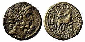 Seleukis and Pieria, Antioch, AD (13/14)  Æ20. Pseudo-autonomous issue under Roman rule, dated year 44 of the Actian Era,. Silanus, magistrate. Laurea...