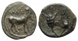 Sicily, Iaitos, c. 330-260 BC BC. Æ (11mm, 0.95g, 9h). Bearded man-faced bull advancing r. R/ Grain ear and barleycorn. Campana 2; CNS I, 1; SNG ANS -...