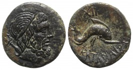 Sicily, Katane, late 3rd - early 2nd century BC. Æ Dichalkon (17mm, 3.52g, 6h). Wreathed head of Poseidon r.; trident to l. R/ Dolphin r.; XII (mark o...