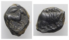 Sicily, Panormos as Ziz, c. 317-280 BC. Æ (13mm, 2.18g, 12h). Horse galloping r.; barleycorn above. R/ Forepart of man-headed bull r. CNS I, 10; HGC 2...