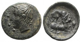 Sicily, Piakos, c. 420-400 BC. Æ Tetras or Trionkion (15mm, 2.16g, 3h). Horned and wreathed head of river-god l. R/ Hound attacking stag r.; barley gr...