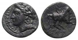 Sicily, Syracuse. Agathokles (317-289 BC). Æ Hexas? (9.5mm, 0.65g, 7h), c. 310-305 BC. Laureate head of Apollo l. R/ Pegasos flying r. CNS II, 89; SNG...