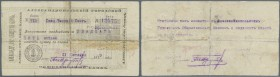 Armenia / Armenien. Aleksandropol Government Corporation Bank 25 Rubles 1919, P.S691, highly rare note, taped and restored. Condition: F-