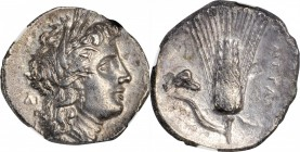 ITALY. Lucania. Metapontion. AR Nomos, ca. 330-280 B.C. NGC AU, Strike: 4/5 Surface: 2/5.