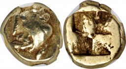 IONIA. Phokaia. EL Hekte (2.56 gms), ca. 625/0-522 B.C. NGC VF, Strike: 4/5 Surface: 4/5.