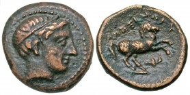 Macedonian Kingdom. Alexander III 'the Great'. 336-323 B.C. AE 17. Uncertain Macedonian mint. From the Don Hay Collection.