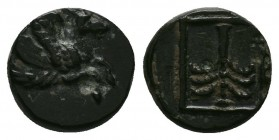 TROAS. Skepsis. AE (Circa 400-310 BC). Obv: Forepart of Pegasos flying right. Rev: Palm tree within linear square border. SNG Copenhagen 483; SNG von ...