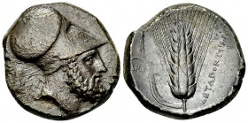 Metapontum AR Distater, c. 340-330 BC 